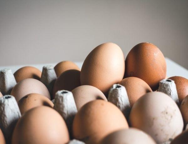 Eier in Eikarton